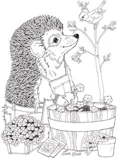 OMG - Jan Brett coloring pages!!!