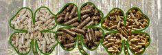 Padova, Green Beans, Vegetables, Food, Essen, Vegetable Recipes, Meals, Yemek, Veggies