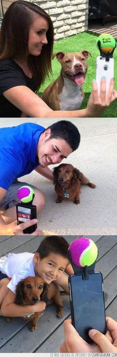 El mejor invento para hacerte fotos que con tu perro