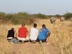 Namibia, near Waterberg Explore, Travel, Animals, Viajes, Animales, Animaux, Destinations, Animal, Traveling