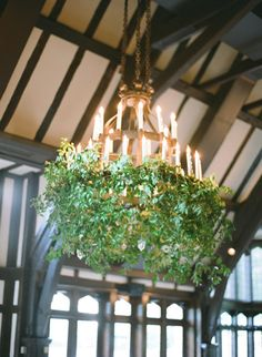 elegant wedding living chandeliers decoration with greenery