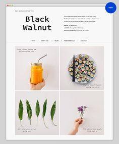 Black Walnut Premium WordPress Theme