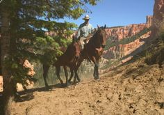 Enjoy a horseback riding vacation in Utah on the Two Inn Trail