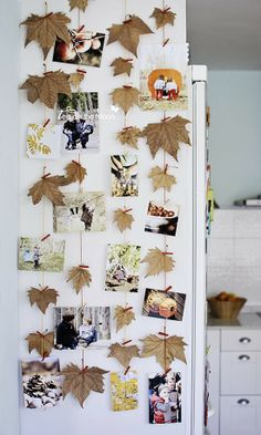 Pics & leaves | Home & Delicious