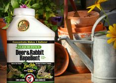 Deer can be a problem in the garden. Eco-friendly methods to control deer include hanging bags of human hair or bars of soap near the garden, contact repellents, area repellents and electric repellents. Learn more about controlling garden pests at The Home Depot's Garden Club.