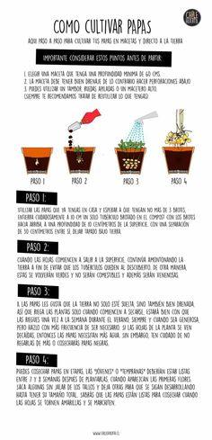 Excellent Organic Gardening Ideas To Maximize Your Garden! Vertical Vegetable Gardens, Home Vegetable Garden, Organic Gardening, Gardening Tips, Container Gardening, Farm Lifestyle, Hardy Plants, Planting Vegetables, Edible Garden