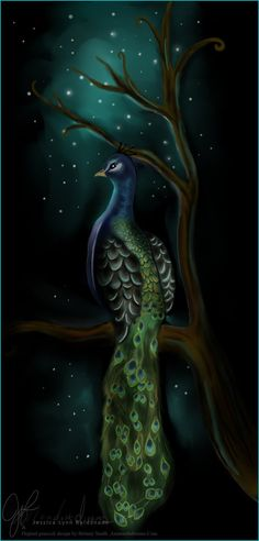 Peacock by ~Moondustdreams