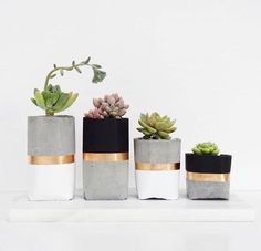 Concrete Pots // DiY Inspo. For desk or patio (but silver, not gold for patio). Pink coral, white, gold for desk. Black, white, dk red, & silver with green plants for patio.