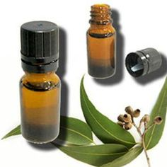 KM Chemicals is the diligent Eucalyptus Oil Manufacturers in India and in the international market areas serving the customers, since 1996. We are skilled with the deep knowledge of organic products to synthesis them naturally in a hygienic environment. The oil is known for its miraculous benefits for hair, body, soul, and mind. Reach us now on the given phone numbers or leave your enquiries through the email now.