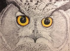 """""""Owl"""" Stippled Ink on Paper"""