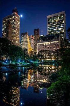 NYC, the park.
