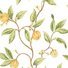 MANGOSTEEN, Yellow on White, T2546, Collection Laguna from Thibaut