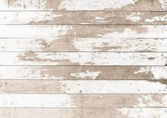 HUAYI Art fabric Vintgae Wood Planks Backdrop Photography For Newborn Drop Background Picture Backdrops, Vinyl Backdrops, Newborn Photos, Baby Photos, White Painted Wood Floors, Fabric Backdrop, Autumn Photography, Halloween Pictures, Photography Backdrops