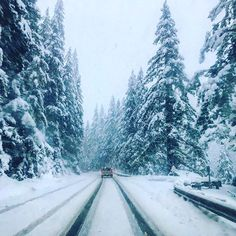 While everyone else braces for the storm we drive straight into it. Powder day south of the border!
