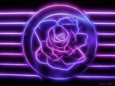 Neon purple | Purple neon rose | Flickr - Photo Sharing!