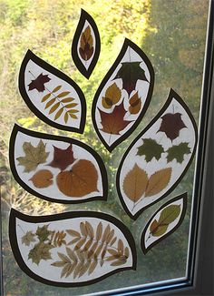 Another way to enjoy fall color from the inside. Ironed between wax paper?…