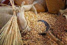La ricerca. Diete, cereali integrali: così si riduce il rischio di mortalità cardiovascolare