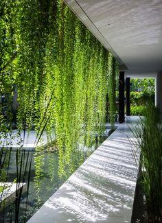 Zening life: Paredes vivas - alive walls (I love green!!!!)                                                                                                                                                                                 Mais