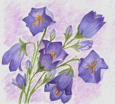 bells, flowers, illustration, watercolor.
