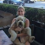 Snuggles after burgers #thekerrydiaries #lincoln #wheaten #wheatenterrier #losangeles #la #runyoncanyon #dogs #puppy