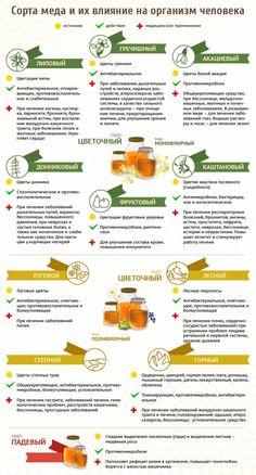 Удивительно полезные свойства меда и холодной воды