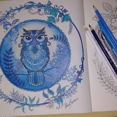 """Coruja do """"Floresta Encantada"""" by Johanna Basford, colorido por Vânia Barros. Talvez eu faço acabamento do fundo. Talvez não. Agora me falta inspiração. #coruja do #florestaencantada by @johannabasford #coloringbook #enchantedflorest #owl #secreatgarden #owlenchantedflorest"""
