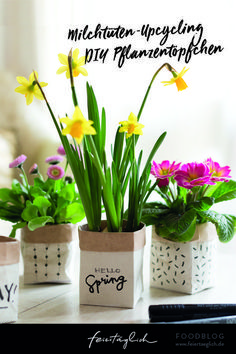 Little spring greetings - DIY plant pots from milk cartons - every day . the beautiful life - Little spring greetings – DIY plant pots from milk cartons – every day … the beautiful life T - Fun Crafts, Diy And Crafts, Crafts For Kids, Diy Recycle, Hello Spring, Potted Plants, Plant Pots, Milk Plant, Life Is Beautiful