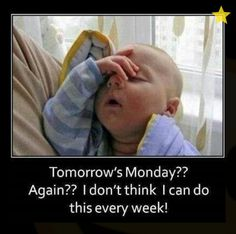 Check out: Baby Memes - Tomorrow's Monday? One of our funny daily memes selection. We add new funny memes everyday! Bookmark us today and enjoy some slapstick entertainment! Funny Baby Memes, Funny Babies, Baby Humor, Funny Sayings, Funny Humor, Kid Sayings, Baby Jokes, Humor Humour, Hilarious Jokes