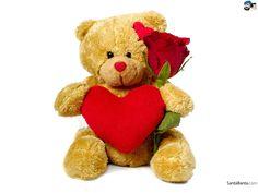 teddy bear - Yahoo Image Search Results