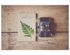 kodak camera green leaf vintage travel book color photo print - whimsical fine art still life photography, wanderlust, brown, rustic on Etsy, $30.00