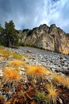 Rocks | Flickr - Photo Sharing!