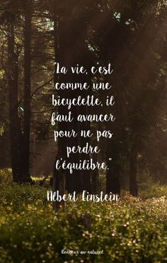 Fond d'écran // Citation Einstein