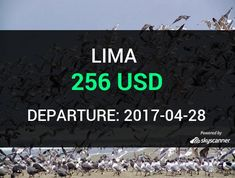 Flight from Denver to Lima by Spirit Airlines #travel #ticket #flight #deals   BOOK NOW >>>