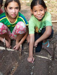 After School Moringa Project    The rows of Moringa are ready to be covered by a thin layer of soil
