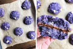 Post Image Blueberry Doughnuts, Best Blueberry Muffins, Blueberry Cookies, Blue Berry Muffins, Blueberry Recipes, Cookie Desserts, Cookie Recipes, Dessert Recipes, No Bake Desserts