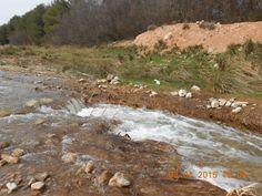 Las aguas revueltas nos regalan el agua clara que fluye libre en el río Ribota de Calatayud.
