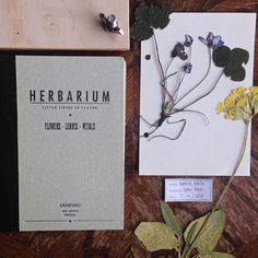 Just came home and my order from @joaogennebra arrived. It's truely the most beautiful handmade book I've ever hold in my hands. Can't wait to fill this beautiful herbarium #herbarium #handmade #etsy #herbs #herbalism #botanical #livefolk #liveauthentic #arminho