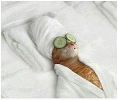 Wake me up when it's time for the body scrub.