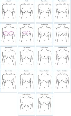 breast shapes, good for bra fitting and making