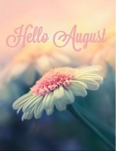 Hello August Images, Hello July, August Month, New Month, Days And Months, Months In A Year, Summer Months, Good Morning Flowers, Good Morning Wishes