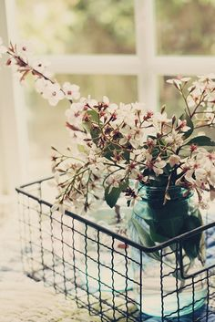 Spring blossoms By lucia and mapp via creature comforts favorites