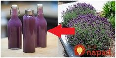 Lavender Recipes, Diy Birthday, Healthy Drinks, Aloe Vera, Herbalism, Beverages, Water Bottle, Goodies, Food And Drink