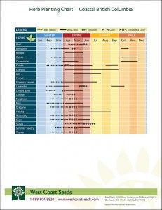 Planting Chart for Herbs in British Columbia