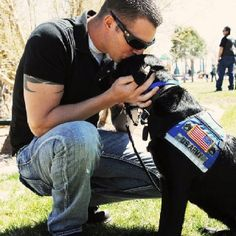 PTSD Therapy Dog. This is what I want to do. Train PTSD therapy dogs. #mentalhealth #health #ptsd