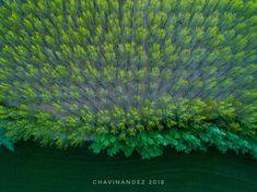 Cuando la naturaleza recobra su territorio – Chavinandez, Fotografía de viajes