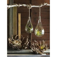 Recycled Glass Hanging Terrariums $85