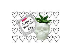 Valentines Planter Gift, Human Skull planter, Cactus Plant pot, Airplant Planter, Goth Skull Planter, Minimalist Planter, Indoor Gardening