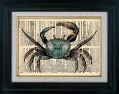Blue Crab Vintage Illustration on Book Page Art Print (id5004)
