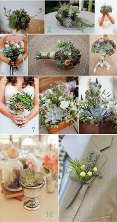 BOTANY {floral studio}: Inspiration Wedding Boards {succulents}