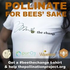 Bee the change t-shirts are cute and $ will be donated to The Pollination Project, a non-profit organization that gives $1000 per day in grants to projects that impact environmental stewardship, animal protection, social justice, and community health and wellness.
